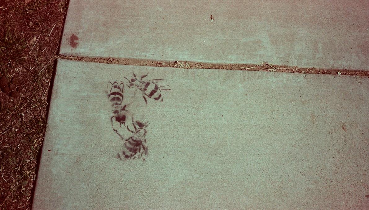 Bees stencil art.