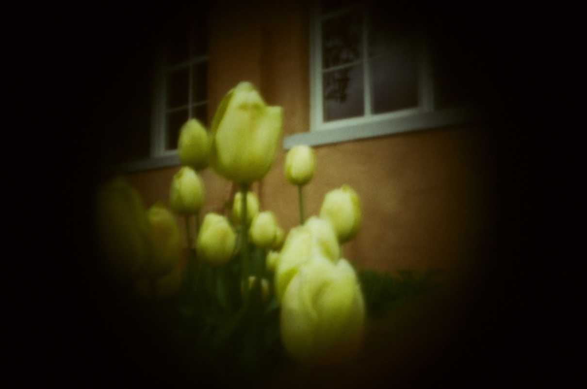 The vignetting is nice with the flowers.