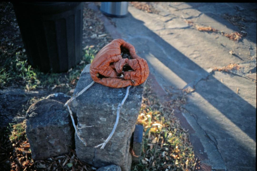 Ye Olde rotting pumpkin.