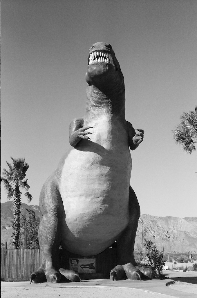 Mr. Rex at the Cabazon Dinosaurs.