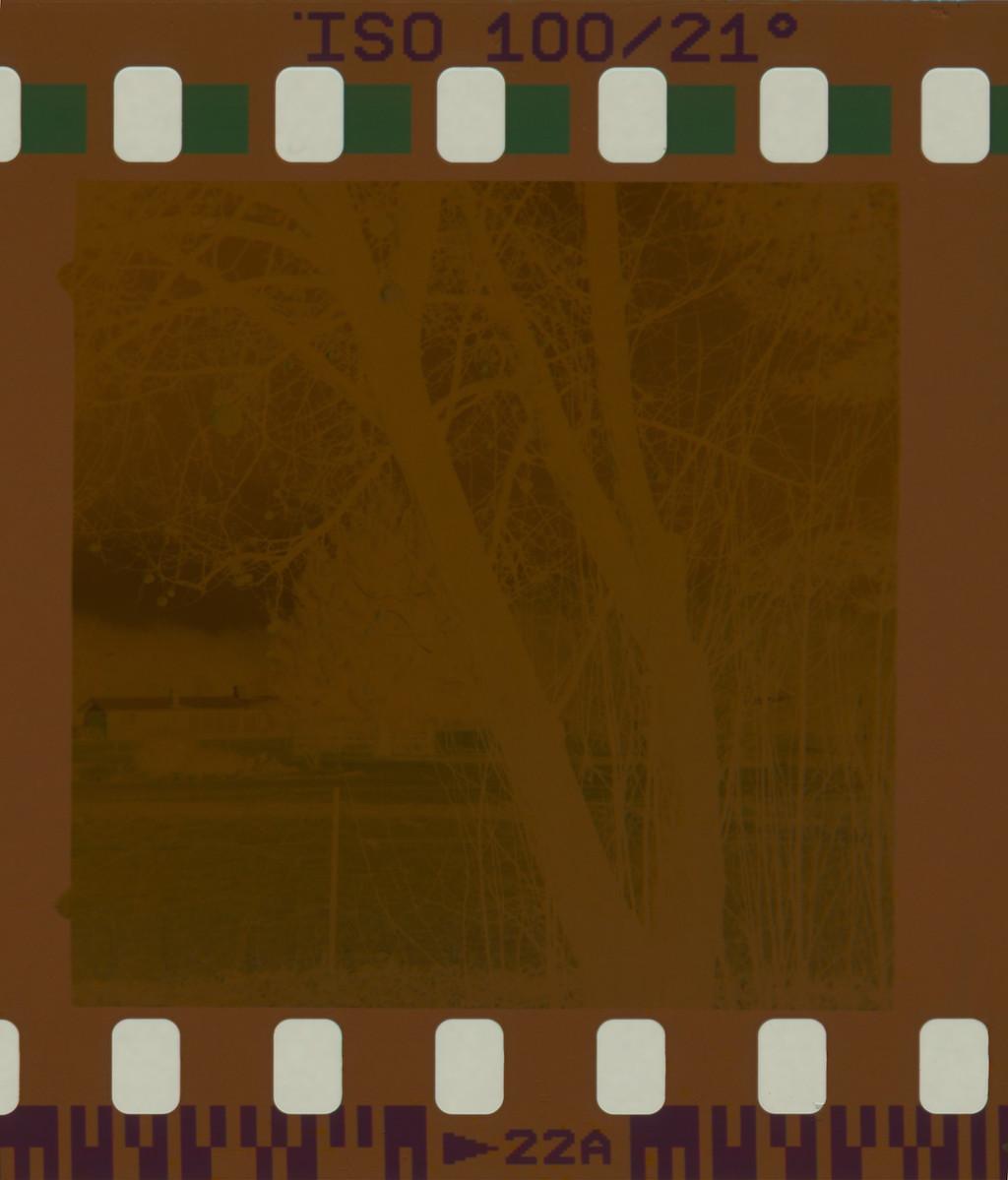 Negative scanned as slide film.