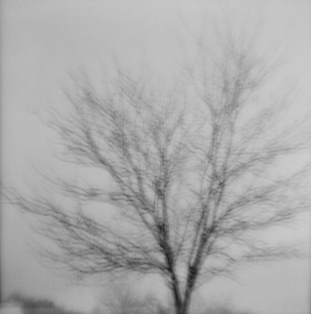 Blurry from the shutter sticking but I kind of like it.