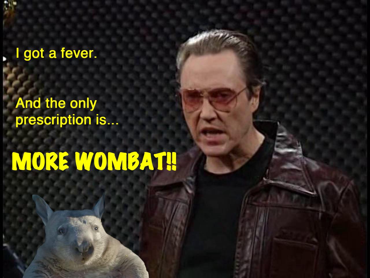 More wombat!