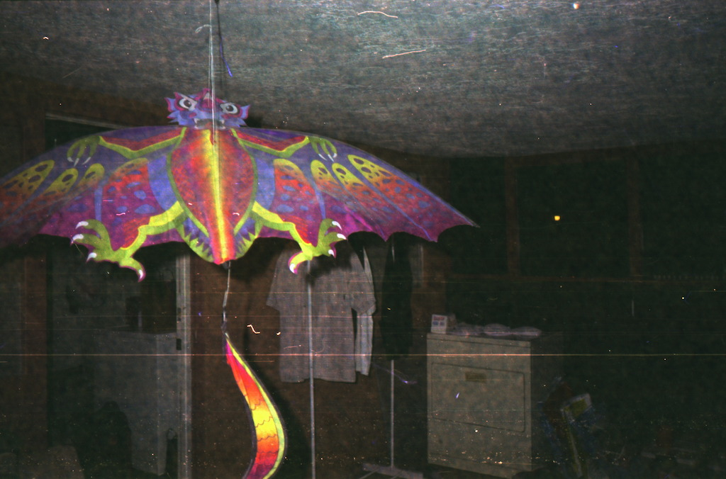 Dragon kite.