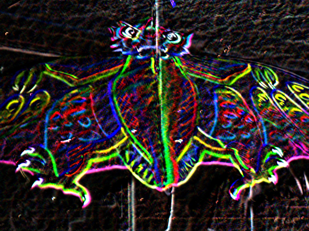 Dragon kite - cropped & neon filter.