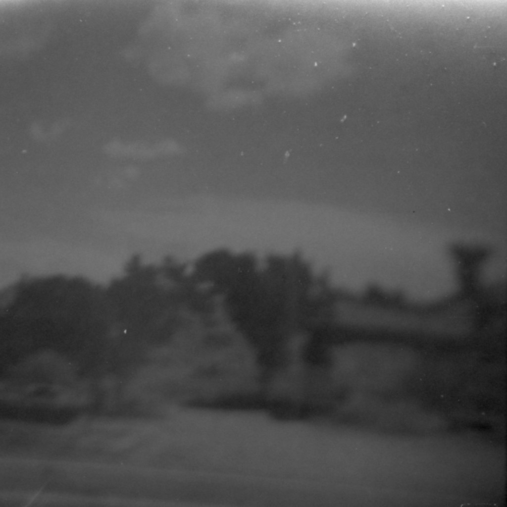 Kodak T-MAX 100. The truck window tint was just the right amount of filter.