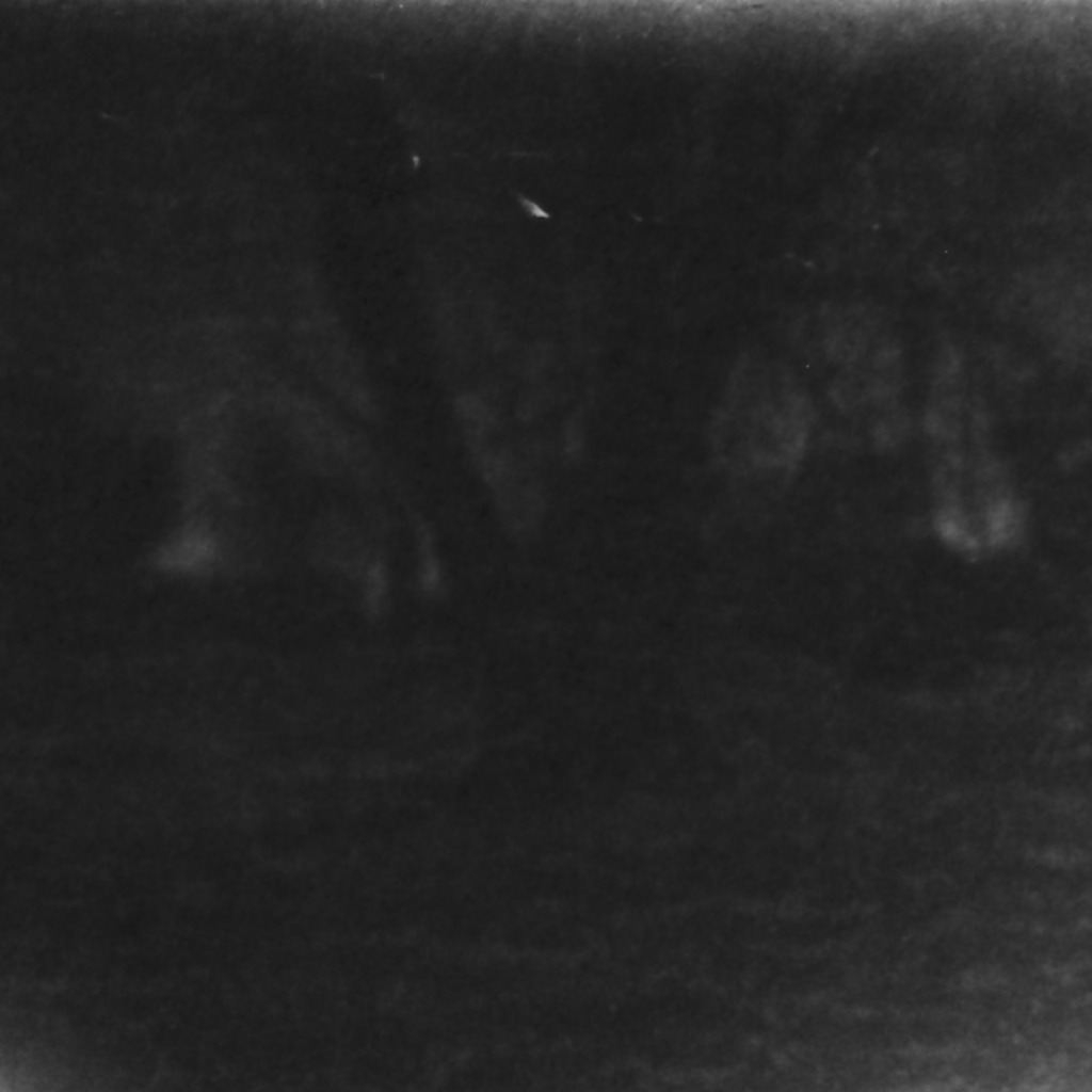 Ilford SFX 200. Spooky backyard tree is spookier with ND & red filters (3 stops).