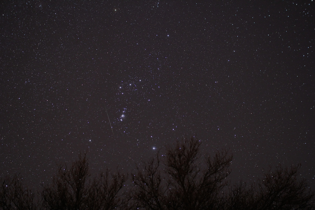 Geminid meteor photobombing Orion